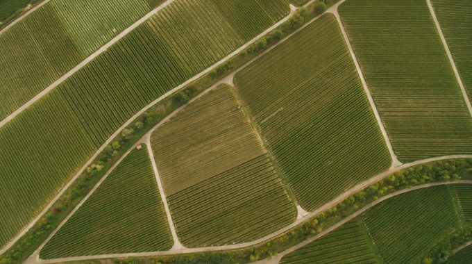 MapSavvy Provides Powerful, Affordable Aerial Imagery For Business